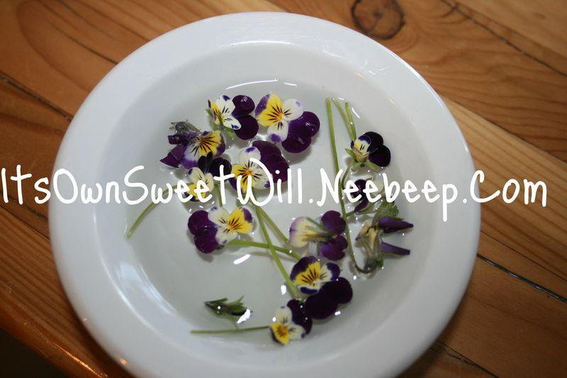 IOSW flowers (2)